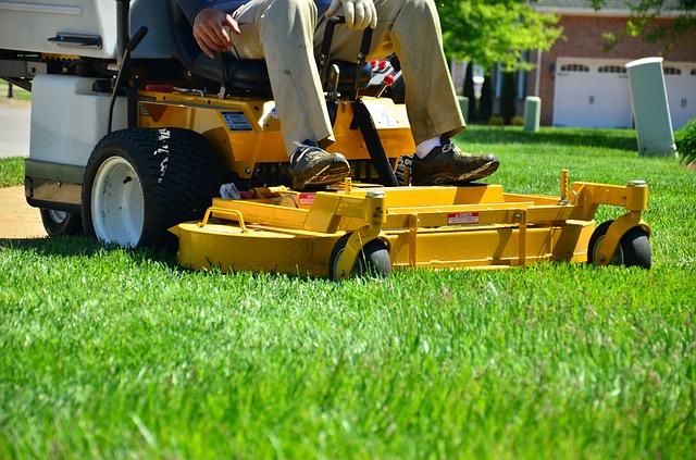 Koszenie trawy, karczowanie