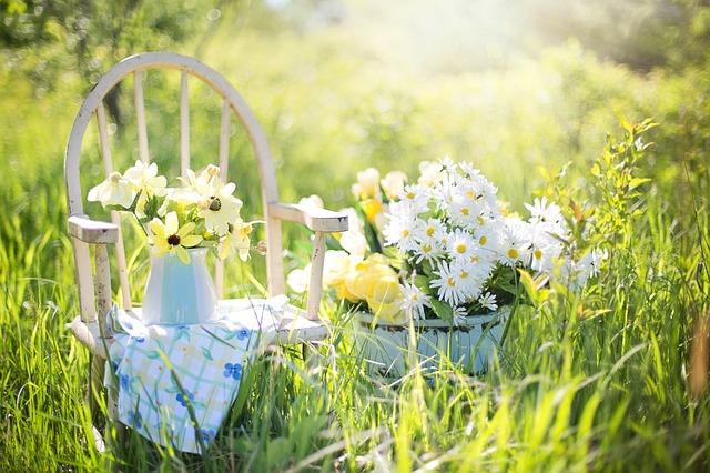 Aranżacje ogrodów – jaka aranżacja ogrodu jest najciekawsza?