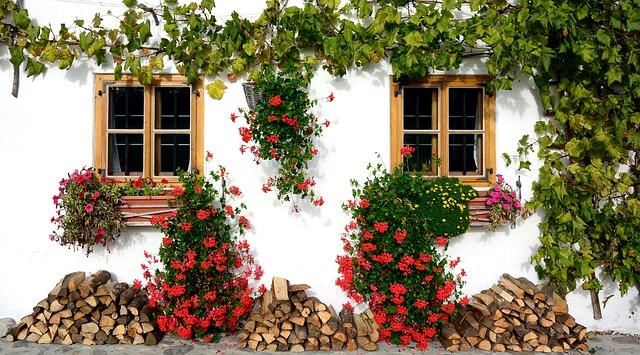 Pojemniki na kwiaty. Jak sprawić by kwiaty wyglądały jeszcze piękniej? Kwiaty w pudełku Gdańsk