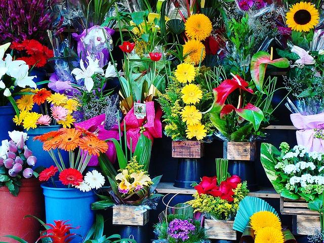 Kwiaty na dzień kobiet. Kobiece święta. Kwiaty na Dzień Matki