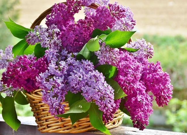 Kwiaciarnia Szczecin. Kwiatowe prezenty – kwiaty na urodziny