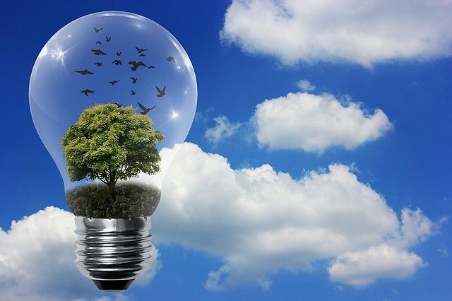 Obiekty, które ustawowo muszą posiadać świadectwo energetyczne Konin